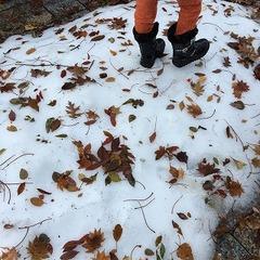 日常ヒトコマ winter